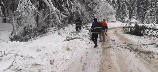На Закарпатті рятувальники продовжують ліквідовувати наслідки негоди (ФОТО)
