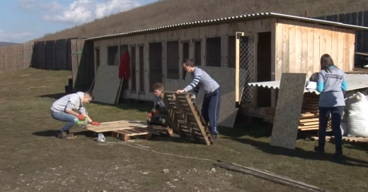 На Ужгородщині школярі допомагали майструвати вольєри для безпритульних тварин