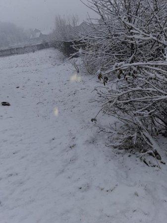 Зима повертається: у гірських районах Закарпаття - знову сніг