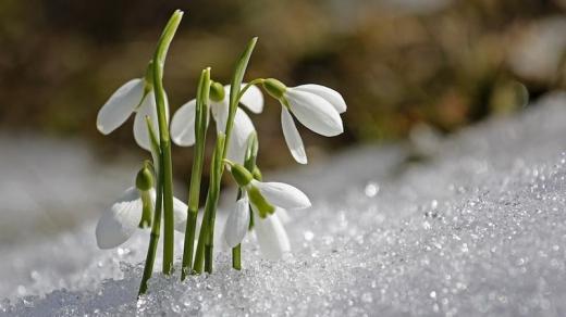 Прогноз погоди на 12 березня: буде по-весняному тепло, але вітряно