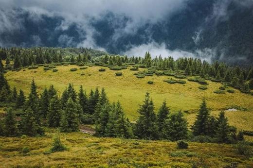 Гірська хвороба: закарпатський фотограф запустив у мережі флешмоб, який допоможе пережити ізоляцію