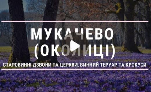 Дерев'яна церква, винний теруар та крокуси: закарпатський блогер - про околиці Мукачева