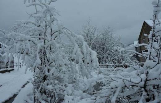На Рахівщині вирує справжня зима (ФОТО)