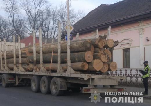 На Березнянщині поліція зупинила дві вантажівки з деревиною з фіктивними документами