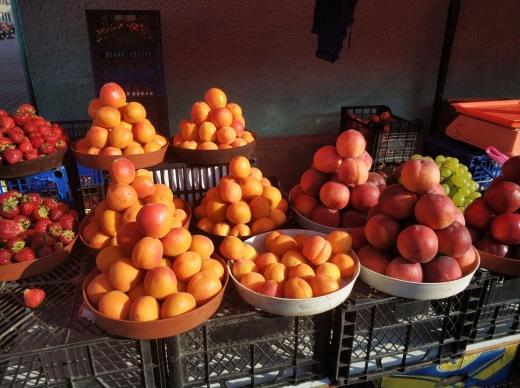 Через заморозки на Закарпатті не буде урожаю ранніх абрикосів та персиків