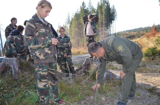 """Лісова кампанія """"Зрубав дерево - посади"""" триває на Закарпатті"""