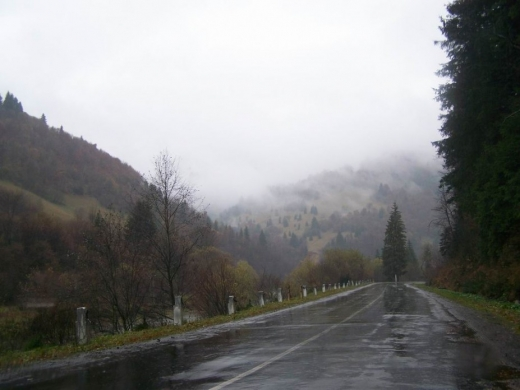 На Закарпатті прогнозують дощ та мокрий сніг у горах