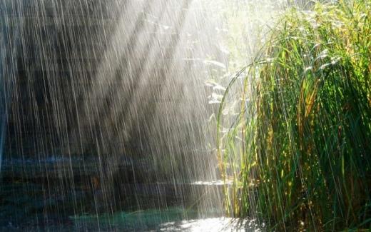 Прогноз погоди на 17 травня: в Україні знову дощитиме і похолодає