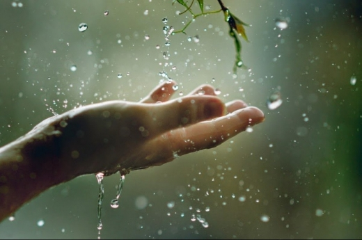 Прогноз погоди на 19 травня: повернення дощів та весняної прохолоди