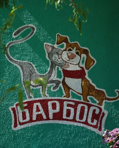Понад 1,5 млн грн виділили з міського бюджету Ужгорода для будівництва нових вольєрів ГО «Барбос»