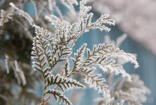 Синоптики попередили про заморозки в Україні 21-23 травня