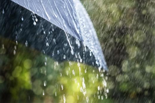 Прохолодно і з дощами: став відомий прогноз погоди в Україні до кінця тижня