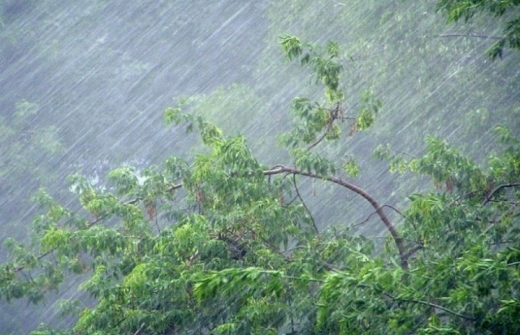 Прогноз погоди на 24 травня: в Україну йдуть затяжні зливи