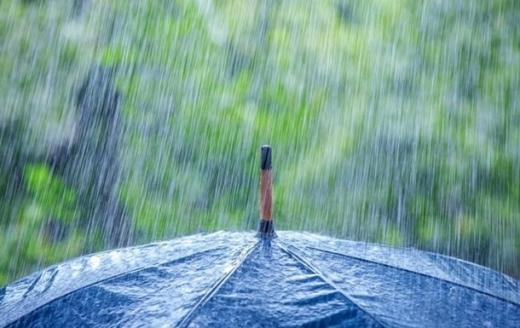 Погода 31 травня: Україну накриють дощі з грозами