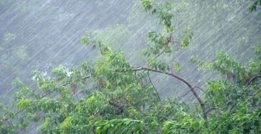 На Закарпатті знову дощитиме: синоптики попередили про погіршення погодних умов