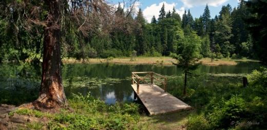 Майже як Синевир: на Закарпатті знайшли ще одне таке ж мальовниче озеро