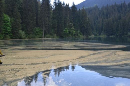 Смерековий пилок укрив озеро Синевир: фото