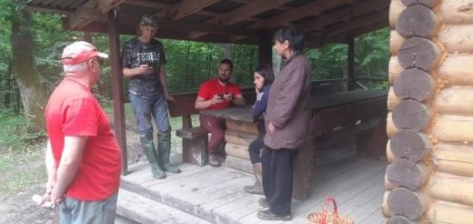 Заблукали: дві закарпатки пішли по гриби і загубилися в лісі