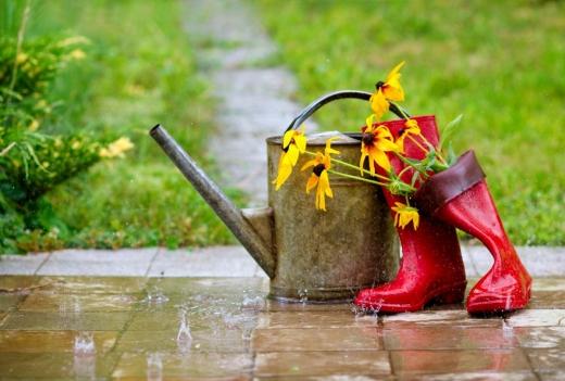 Погода на завтра: в Україні буде спекотно, місцями пройдуть дощі