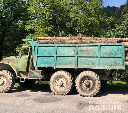 Вантажівку із нелегальною деревиною затримали поліціянти на Закарпатті