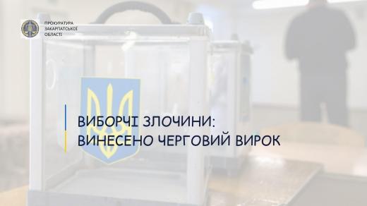 Закарпатка, що працювала членом ДВК зізналася у вчиненні злочину: подробиці