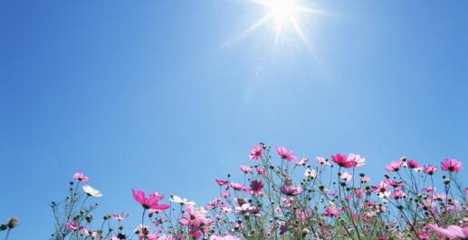 Синоптики дали прогноз погоди на 2 серпня