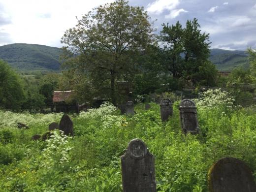 У Перечині розчистили єврейське кладовище