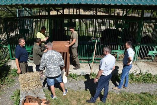 Закарпатський реабілітаційний центр бурих ведмедів поповнився новими мешканцями