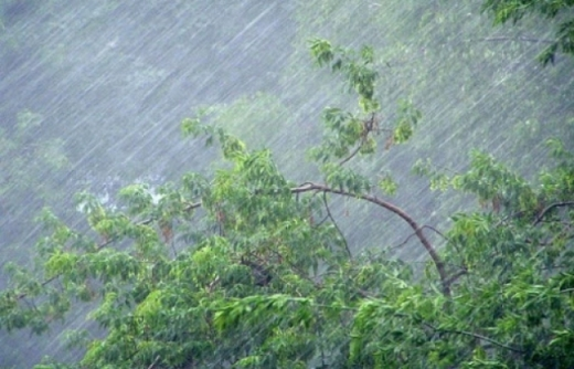 Підтоплення та підняття рівня води в річках прогнозують на Закарпатті