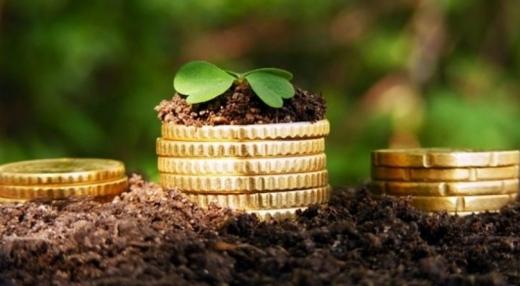 Завдяки землі та платникам, місцеві бюджети Закарпаття отримали понад 232 млн гривень
