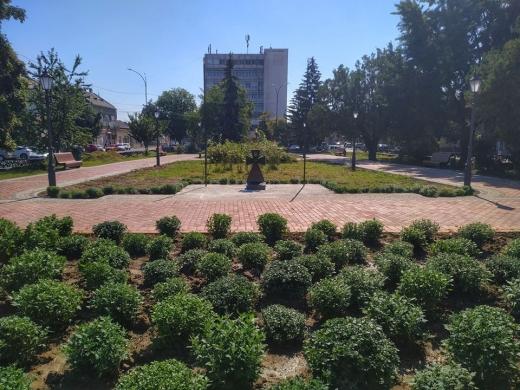 В Ужгороді, на площі Шандора Петефі, висадили хризантеми (ФОТОФАКТ)