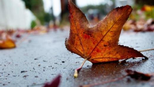Тепліше ніж зазвичай: яку погоду чекати у вересні