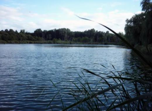 У річці на Закарпатті потонула літня жінка