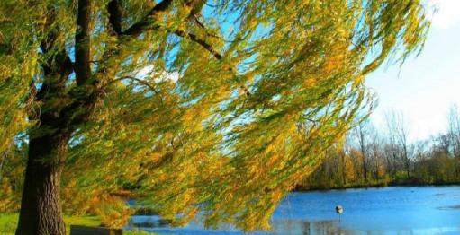 Прогноз погоди на 18 вересня: штормовий вітер та заморозки остудять Україну