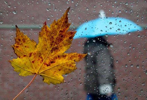 Прогноз погоди на 29 вересня: сильні дощі, поривчастий вітер, але ще тепло