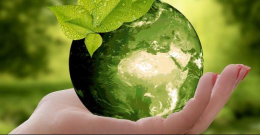 До світової екологічної акції із прибирання довкілля долучиться й Закарпаття