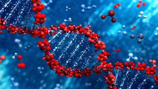 На Закарпатті стартував проєкт по дослідженню геному жителів прикордонних територій