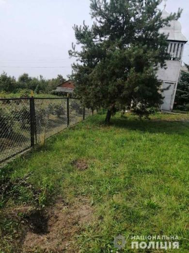 На Ужгородщині вкрали 12 дерев туї з подвір'я церкви