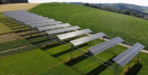 На Кіпрі встановлять сонячну станцію потужністю 13 МВт над плантацією ароматичних трав
