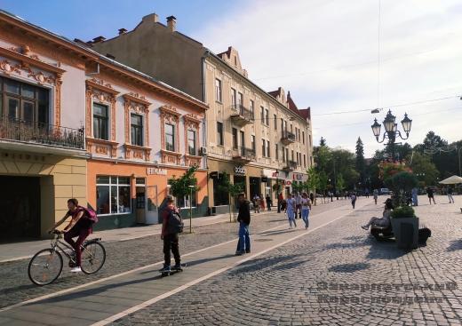 Виставка собак, п'єси та майстер-класи: цікаві події в Ужгороді цими вихідними