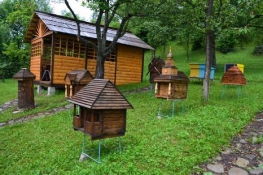 На Закарпатті з'явилась пасіка - музей розвитку бджолярства