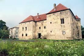 Закарпатське подружжя взялося за відновлення стародавнього Чинадіївського замку (ВІДЕО)
