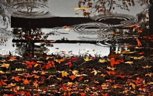 Синоптики дали прогноз погоди на тиждень 5-11 жовтня