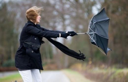Синоптики попередили закарпатців про сильний вітер