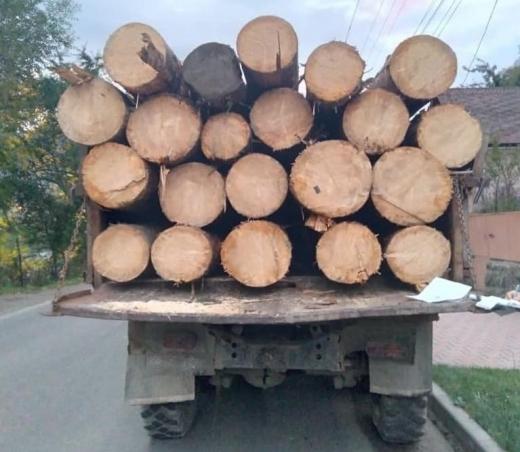 У Рахові поліція зупинила ЗІЛ, на якому перевозили деревину за підробленими документами