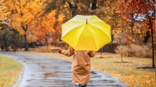 На вихідних буде тепло і дощі