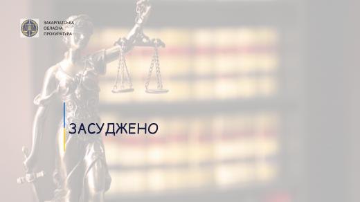 За побиття брата до смерті мешканця Виноградівщини засудили до 9 років ув'язнення