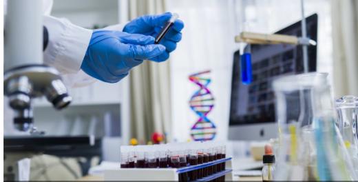 Створили перший тест на визначення рівня антитіл до коронавірусу