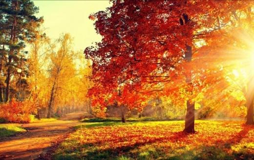 Прогноз погоди на 21 жовтня: в Україну повертається осіннє тепло