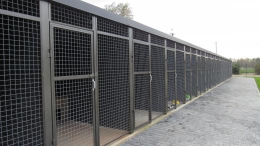Найкращий в  країні Центр контролю за тваринами відкрили на Закарпатті